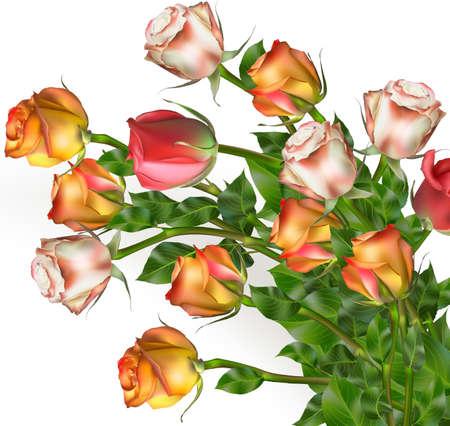 Abstracte achtergrond van bloemen. Detailopname. EPS-10 vector-bestand opgenomen
