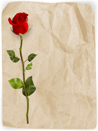 edit valentine: Happy Valentines Day background. Single red rose on an old paper background. EPS 10 vector file included