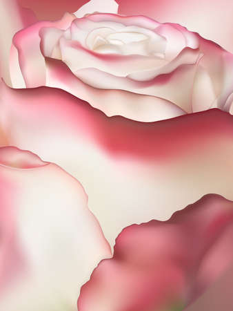 Pink rose macro. EPS 10 vector file included Illustration