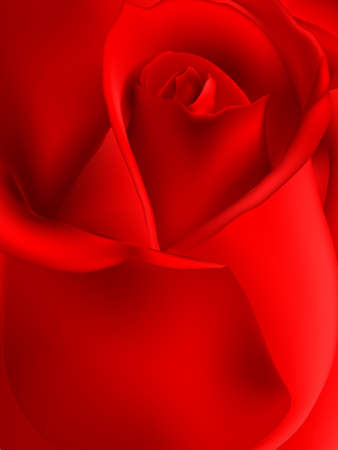 macro flowers: Beautiful red rose for greeting cards and invitations of the wedding, birthday, Valentines Day, mothers day and other seasonal holidays. EPS 10 vector file included