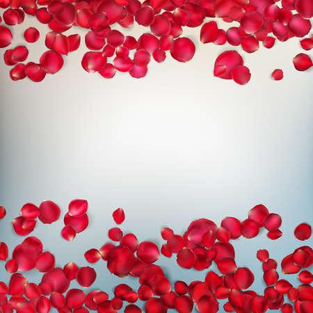 Red rose petals. Valentines card background. EPS 10 vector file included Illustration