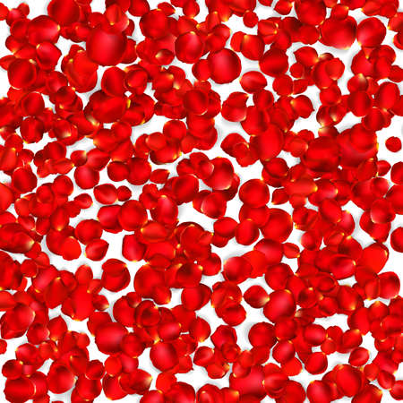 red rose petals: Background of beautiful red rose petals. EPS 10 vector file included Illustration