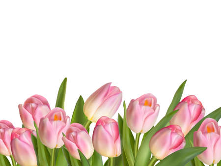 Beautiful realistic tulip bouquet. EPS 10 vector file included Çizim