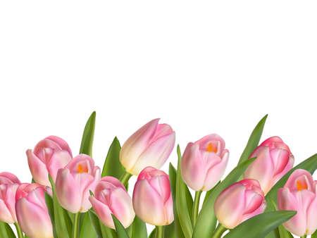 dia: Hermoso ramo tulipán realista. archivo vectorial EPS 10 incluido