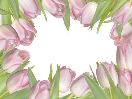 fresh flowers: Pink fresh spring flowers background. Illustration
