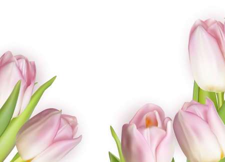 wet leaf: Beautiful bouquet of pink tulips, isolated on white. Illustration