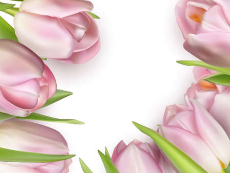 season s greeting: Beautiful bouquet of pink tulips. Illustration
