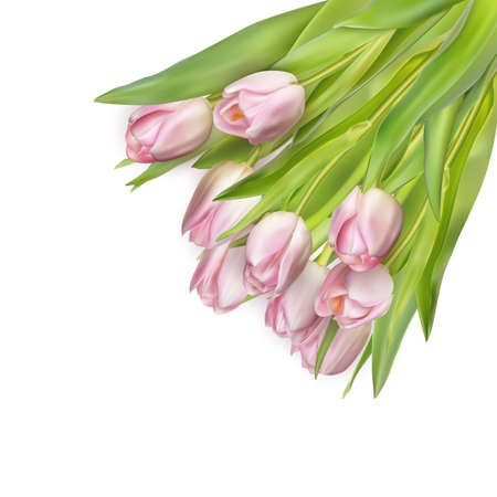 Beautiful bouquet of pink tulips. Illustration