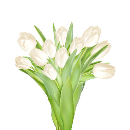 floret: Tulips decorative background with copy space.