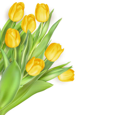 mother s: Bouquet of tulips Mother s Day flowers on white background. EPS 10 vector file included Illustration