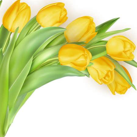borde de flores: Fondo de vacaciones con el ramo de tulipanes amarillos. archivo vectorial EPS 10 incluido Vectores