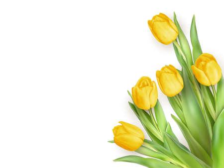 Printemps Cadre naturel avec tulipes jaunes Fleurs.