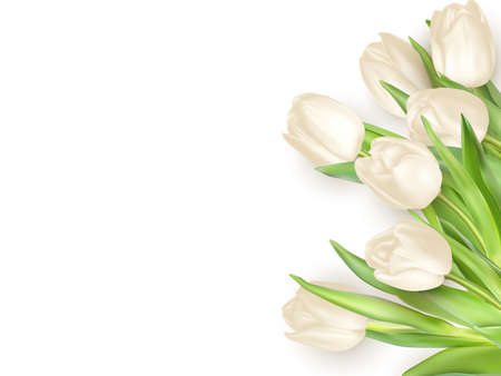 green leaves border: Isolated tulip frame arrangement, on a white background.
