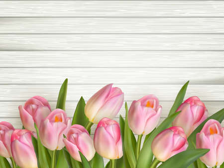 macro flowers: Tulip on the wooden background. EPS 10 vector file included