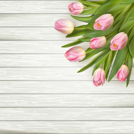 white wood: Pink tulips over white wood.  vector file included
