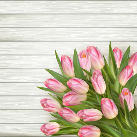 wedding table decor: Pink tulips over white wood. EPS 10 vector file included Illustration