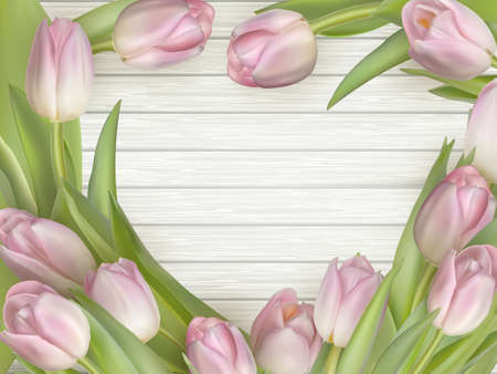wooden color: Pink tulips lying on wooden background white gray color. Flowers on wooden background. Pink tulips over shabby white wooden background. EPS 10 vector file included