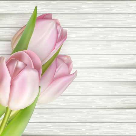 bunch of flowers: Pink tulips over white wood. vector file included Illustration