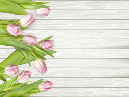 Pink tulips over white wood table. vector file included Illustration