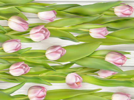 macro leaf: Tulip on the wooden background. vector file included