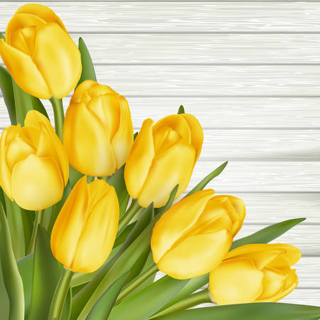 bunch up: Bunch of fresh yellow tulips close up on wooden background, retro toned.  vector file included