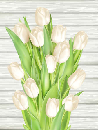 bouquet: Beautiful bouquet of white tulips on wooden background. vector file included