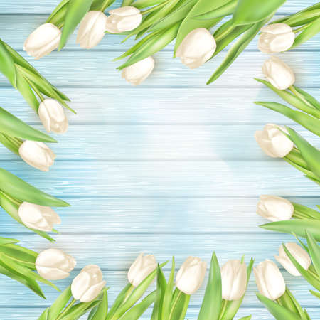wedding background: Fresh white tulips on turquoise painted wood planks. Place for text. vector file included Illustration