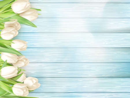 macro flowers: Border with white tulips on turquoise painted old wooden background.  vector file included
