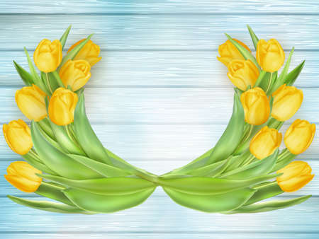 high angle view: Fresh spring yellow tulips flowers on turquoise wooden planks. Selective focus. Place for text.  vector file included