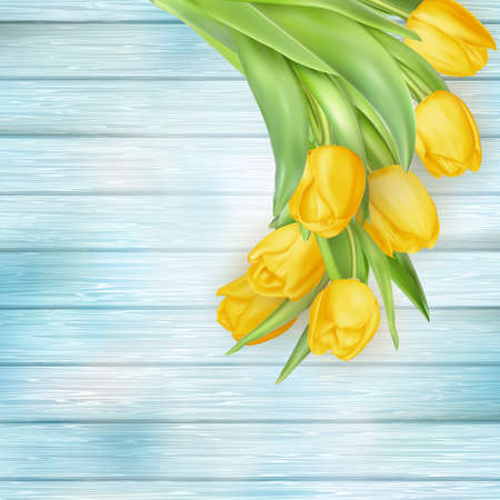 bosom: Fresh spring yellow tulips flowers on turquoise wooden planks. Selective focus. Place for text. EPS 10 vector file included