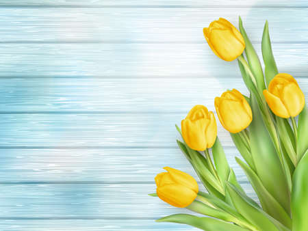 fresh flowers: Fresh spring yellow tulips flowers on turquoise wooden planks. Selective focus. Place for text. vector file included