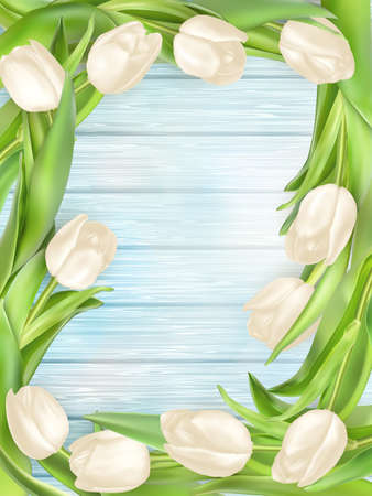 table decoration: Tulip flower on turquoise painted wooden table background. Top view with copy space.  vector file included Illustration