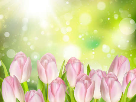 mother s: Tulips on green background with space for message. Mother s Day background. Soft focus. EPS 10 vector file included Illustration