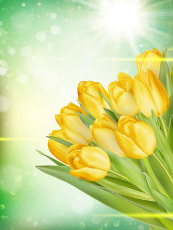 bokeh message: Bouquet of yellow tulips on bokeh background with space for message. Valentines Day and Mothers Day background. Soft focus.