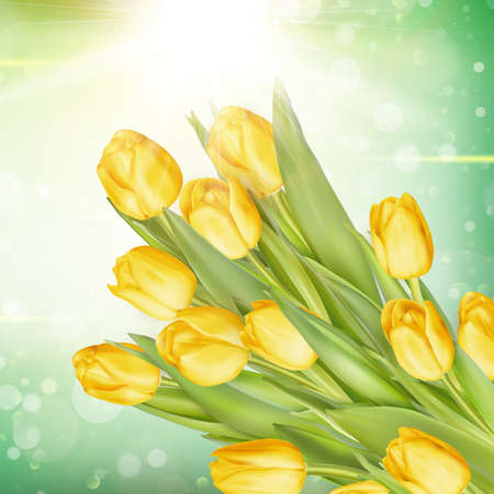 flowers bouquet: Bunch of fresh yellow tulips close up over green bokeh background.