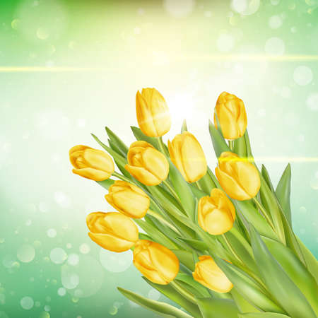 macro flowers: Bouquet of yellow tulips over blurred green background. fresh spring flowers.