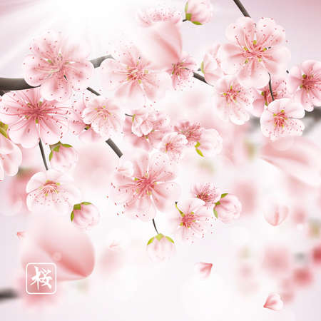 blossoming: Beautiful print with blossoming dark and light pink sakura flowers with bokeh effect, shallow D.O.F. Hieroglyph - Sakura.