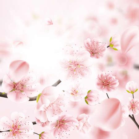 dof: Spring cherry tree blossoms on pink bokeh background. Very shallow DOF. Illustration