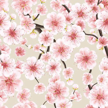 cherry blossom: Seamless background pattern of pink Sakura blossom or Japanese flowering cherry symbolic of Spring in a random arrangement square format suitable for textile. EPS 10 vector file included