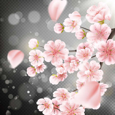 Spring cherry tree blossoms on pink bokeh background. Very shallow DOF. EPS 10 vector file included