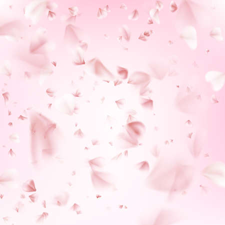 flower petals: Flying petals of sakura. Spring collection. EPS 10 vector file included