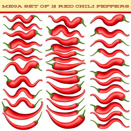 capsaicin: Mega set of 38 Red chili peppers isolated on white background. Red hot chili pepper. vector file included Illustration