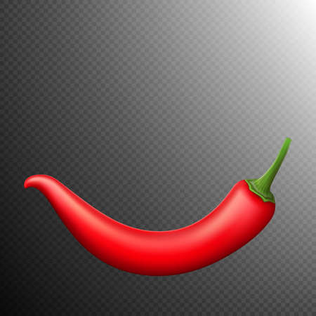 capsaicin: Red chili pepper isolated on transparent background. Red hot chili pepper. vector file included Illustration