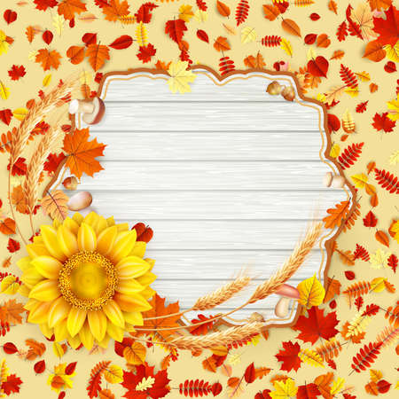 Autumn leaves background. Illustration