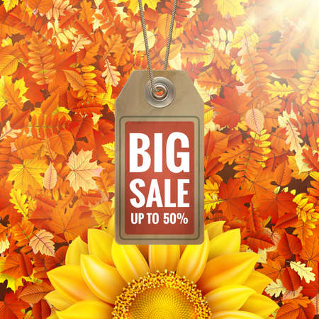 sale sticker: Sunflower on autumn foliage with sale tag.