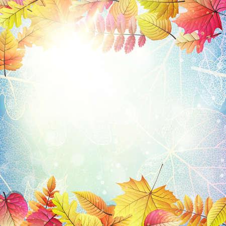 Beautiful autumn background with sun.
