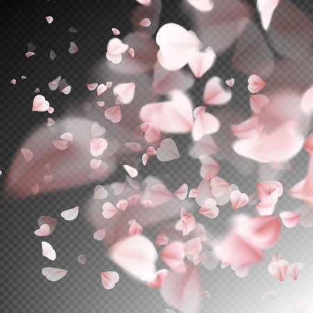 fall down: Bright cherry petals fall down. A lot of pink petals on transparent background. Nature backdrop. EPS 10 vector file included Illustration