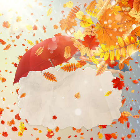 Background on a theme of autumn. EPS 10 vector file included