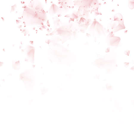 Beautiful light spring background pattern with pink flying petals of sakura - Japanese cherry tree. Floral romantic white wallpaper. EPS 10 vector file included