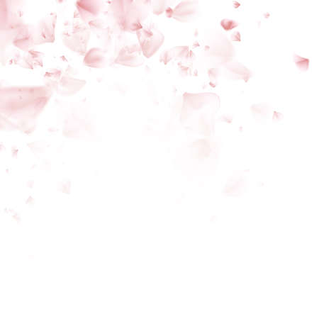 cherry pattern: Flying petals. Pattern on white color background. EPS 10 vector file included